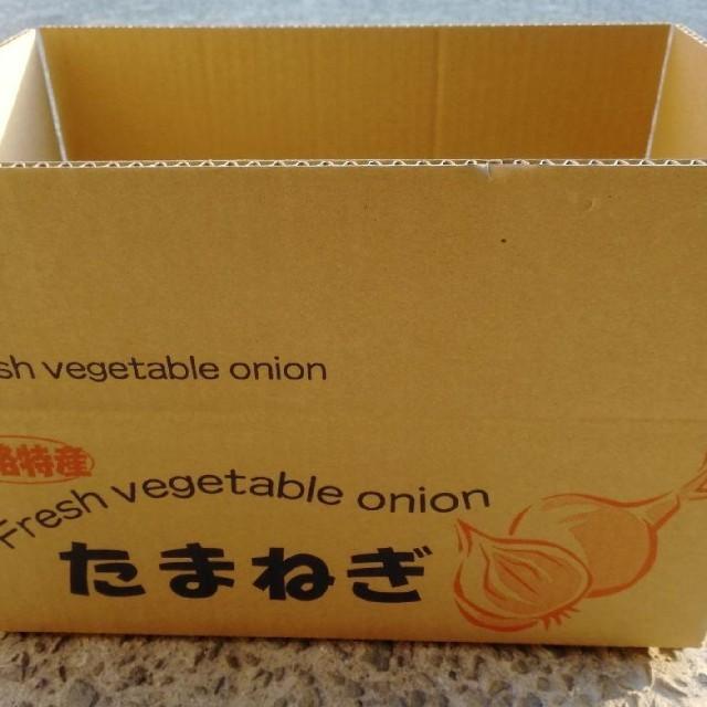 ★淡路島冷蔵玉ねぎ★Lサイズ5Kg 食品/飲料/酒の食品(野菜)の商品写真
