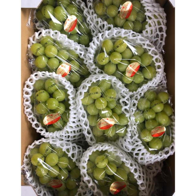 シャインマスカット9房 食品/飲料/酒の食品(フルーツ)の商品写真