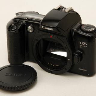 キヤノン(Canon)の動作確認済 CANON キャノン EOS kiss ブラックボディ(フィルムカメラ)
