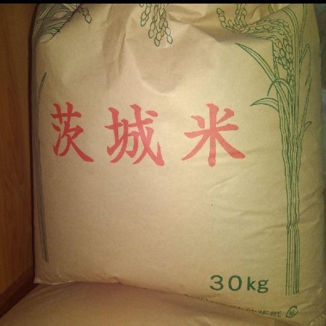 【新米】 コシヒカリ玄米 20kg 食品/飲料/酒の食品(米/穀物)の商品写真