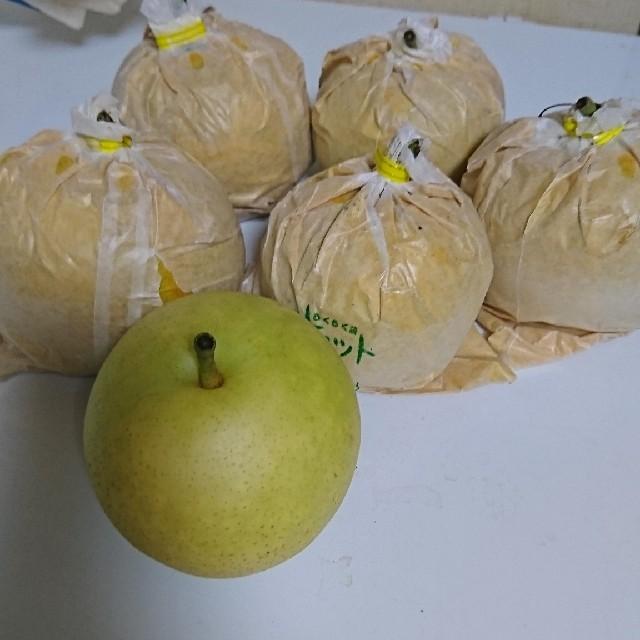鳥取県産二十世紀梨8個 食品/飲料/酒の食品(フルーツ)の商品写真