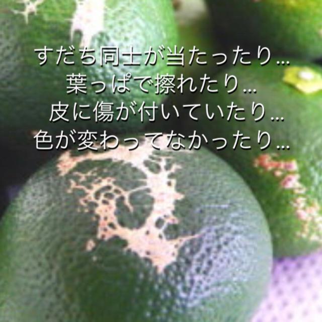 旬野菜 8〜10種類 お任せ詰め合わせ 野菜セット 80サイズ箱 送料無料! 食品/飲料/酒の食品(野菜)の商品写真