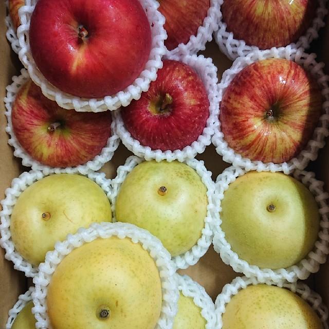 ◎送料込み◎鳥取県産 二十世紀 梨、長野県産 サンつがる りんご 食品/飲料/酒の食品(フルーツ)の商品写真