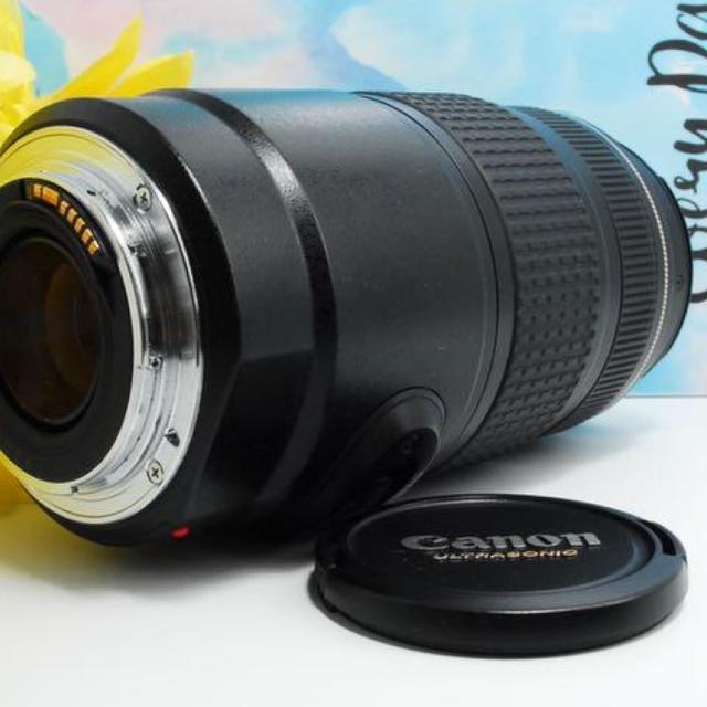 Canon(キヤノン)の【手振れ補正★】CANON EF 75-300mm F4-5.6 IS USM スマホ/家電/カメラのカメラ(レンズ(ズーム))の商品写真