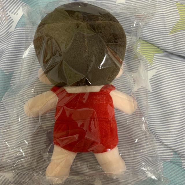 SHINee ジョンヒョン 15cm ぬいぐるみ エンタメ/ホビーのタレントグッズ(アイドルグッズ)の商品写真