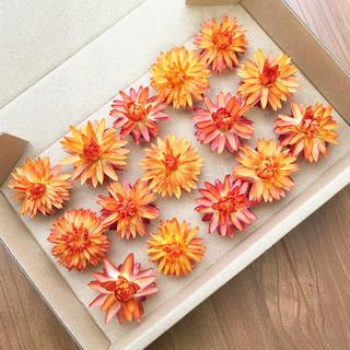 花材セット ドライフラワー ヘリクリサム オレンジ 小さめ15個 ハーバリウムに(ドライフラワー)
