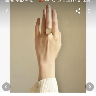 ビューティアンドユースユナイテッドアローズ(BEAUTY&YOUTH UNITED ARROWS)の指輪 新品 ゴールド シグネットリング24k(リング(指輪))
