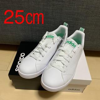 アディダス(adidas)のadidas neo バルクリーン2 スニーカー 25センチ(スニーカー)