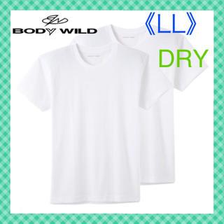 グンゼ(GUNZE)の【ボディワイルド】 DRYクルーネック半袖Tシャツ《LL》 2枚組(Tシャツ/カットソー(半袖/袖なし))