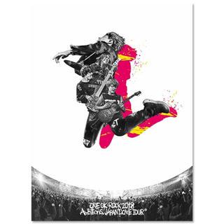 ワンオクロック(ONE OK ROCK)の LIVE DVD AMBITIONS JAPAN DOME TOUR(ミュージック)