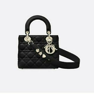 クリスチャンディオール(Christian Dior)の正規品♡ディオール ABCディオール マイディオール レディディオール lady(ハンドバッグ)