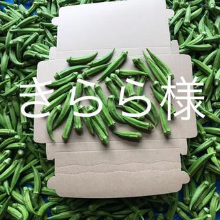 鹿児島産甘オクラ箱込み400g^_^(野菜)