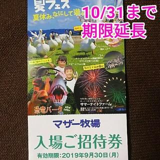 千葉 富津市 マザー牧場 招待券 1枚(動物園)