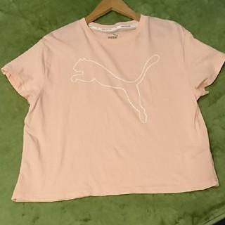 PUMA - 美品*プーマ*スポーツ*Tシャツ*ウェア*ヨガ*ジム*XL