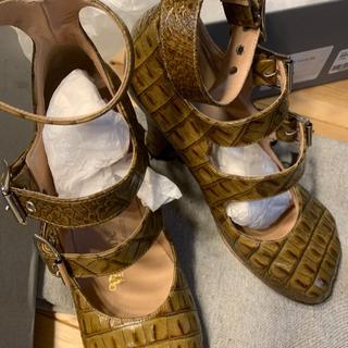 Vivienne Westwood - 猫足 アニマルトゥ 3ストラップ クロコ 24cm