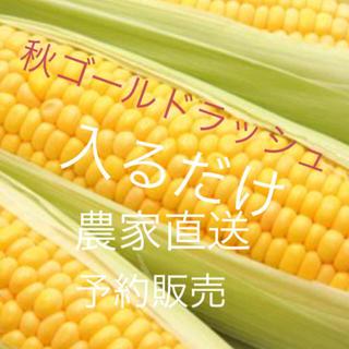 農家の無農薬ゴールドラッシュ入るだけ残りわずか(野菜)