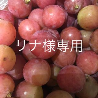 山梨県勝沼産 ゴルビー  1kg  (フルーツ)