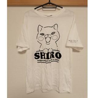しまむら - 3月のライオン Tシャツ メンズ しまむら LL シロ XL 白色
