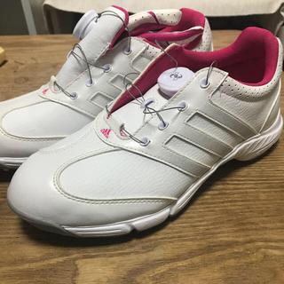 adidas - ゴルフシューズ アディダス