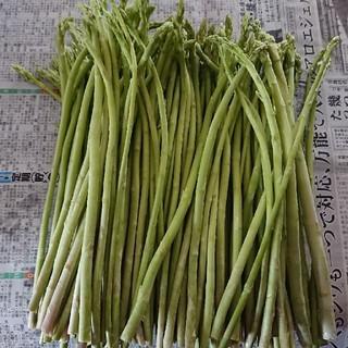 えいたん様専用(佐賀県産グリーンアスパラ 2箱)(野菜)