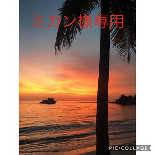 Ravijour - ミカン様専用ページ