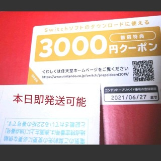 Nintendo Switch - 3000円分ダウンロードクーポンのみ 任天堂スイッチ