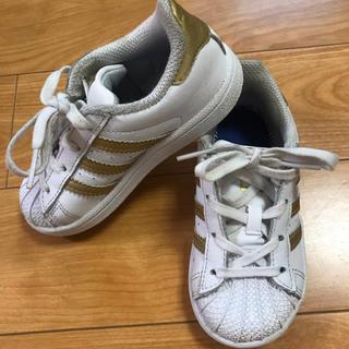 adidas - adidas スニーカー super star 14.5