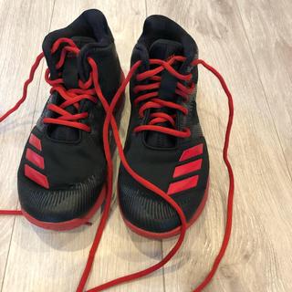 adidas - アディダス バッシュ 20センチ