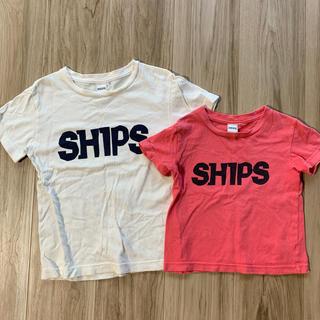 シップス(SHIPS)の兄妹 お揃い(Tシャツ/カットソー)