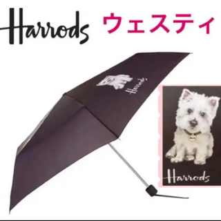 ハロッズ(Harrods)のHarrods ハロッズ ウェスティパピー 傘 《新品タグ付》匿名配送 送料込み(傘)