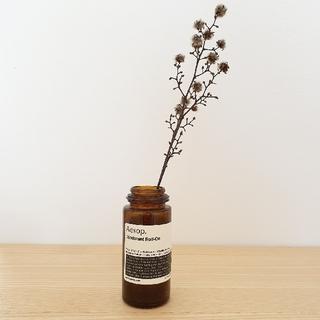 イソップ(Aesop)のaesop  イソップ インテリア 花瓶 空き瓶 ラベル 瓶 ミニマリスト (置物)