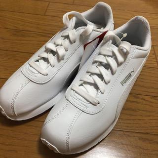 プーマ(PUMA)のPUMA(ホワイト)【Men's /25.0/新品】9/20迄(スニーカー)