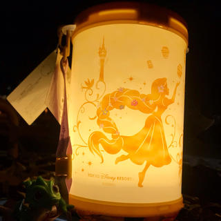 Disney - 【購入数限定品】ラプンツェル ポップコーンバケットーC