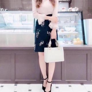 PROPORTION BODY DRESSING - プロポーション リリーブラッシュタイトスカート