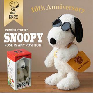 SNOOPY - おかいものSNOOPY限定  10周年記念ポーズぬいぐるみ(限定BOX)