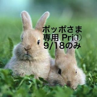 Primavista - ★新品☆プリマヴィスタ皮脂くずれ防止下地25ml