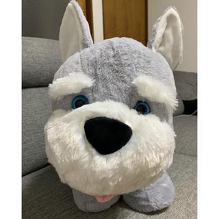 コストコ(コストコ)のアニマル チャム シュナウザー ぬいぐるみ コストコ(犬)