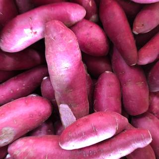 ビタミン豊富ー紫芋1.3キロ(野菜)