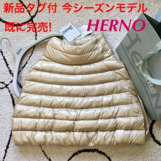 ヘルノ(HERNO)の新品タグ付 今シーズンモデル レア完売!HERNO サイズ42(ダウンコート)