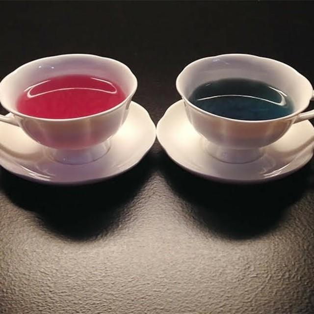 名探偵コナン×Karel Capek  2タイプセット 食品/飲料/酒の飲料(茶)の商品写真