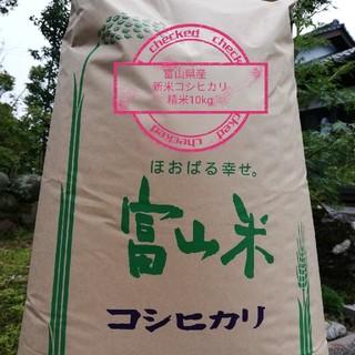 新米 令和元年産 富山県産コシヒカリ 精米20kg