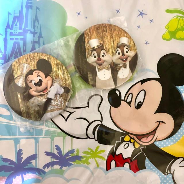 Disney(ディズニー)のワンマンズドリーム カプセルトイ ミニー&チデ エンタメ/ホビーのおもちゃ/ぬいぐるみ(キャラクターグッズ)の商品写真