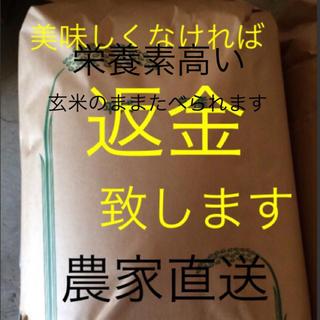 最高級 一等米 渡部家の新米こしひかり 25㎏玄米有機栽培