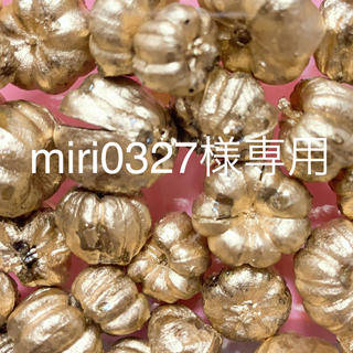 miri0327様専用ページ♡カラマツ5色10個・プッカゴールドプラチナ各5g(ドライフラワー)