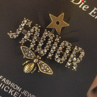 Dior - DIOR ブローチ 予約販売
