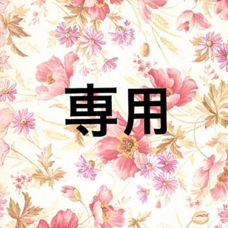 ちーちゃん様 専用(青汁/ケール加工食品)