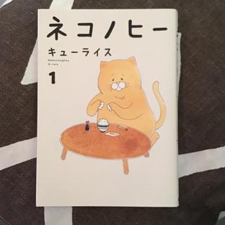 角川書店 - 「ネコノヒー 1巻 」キューライス KADOKAWA 猫漫画 中古