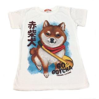 新品 可愛い Tシャツ 犬 赤柴犬 半袖 ホワイト L(Tシャツ(半袖/袖なし))