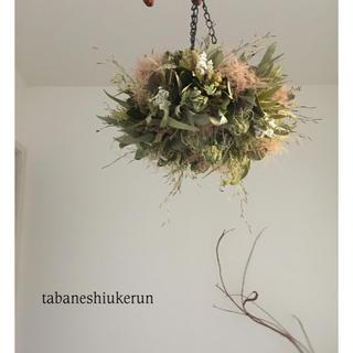 ユーカリ香るアンティークグリーンの薔薇を添えた フライングリース ドライフラワー(ドライフラワー)