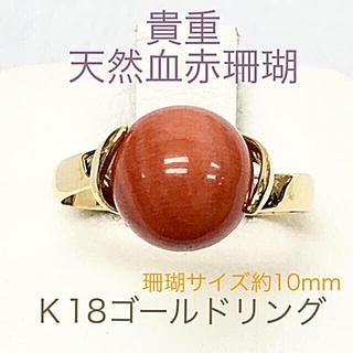 貴重天然血赤珊瑚 K18ゴールドリング 指輪(リング(指輪))